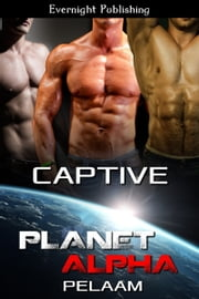 Captive ebook by Pelaam