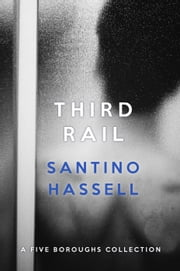 Third Rail - Five Boroughs ebook by Santino Hassell