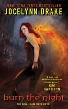 Burn the Night ebook by Jocelynn Drake