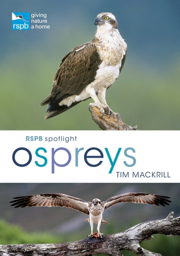 RSPB Spotlight Ospreys eBook by Mr Tim Mackrill