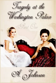 Tragedy at the Washington Palace ebook by Lauren A. Johnson
