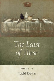 The Least of These ebook by Todd Davis