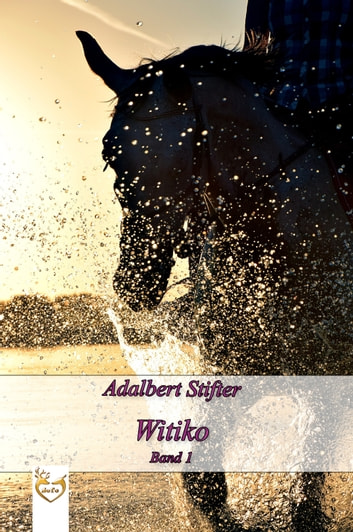 Witiko - Band 1 ebook by Adalbert Stifter