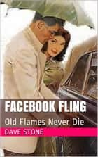 Facebook Fling ebook by Dave Stone