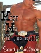 Meet Me in the Barn ebook by Sandy Sullivan