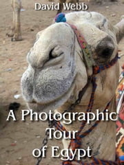 A Photographic Tour of Egypt ebook by David Webb