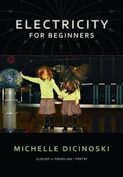 Electricity for Beginners ebook by Michelle Dicinoski