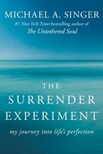 The Surrender Experiment, My Journey into Life's Perfection