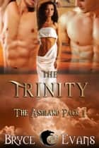 The Trinity ebook by Bryce Evans