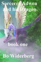 Sorcerer Adwen and His Dragon, Book One ebook by Bo Widerberg