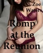 Romp at the Reunion ebook by Zoe Waters