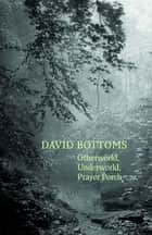 Otherworld, Underworld, Prayer Porch ebook by David Bottoms
