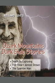 Ozark Mountains Dark Side Stories ebook by Rolland Love