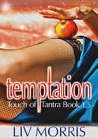 Temptation (Touch of Tantra Novella) ebook by Liv Morris