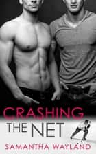Crashing the Net ebook by Samantha Wayland