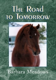 The Road to Tomorrow ebook by Barbara Meadows