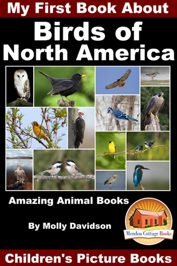 My First Book About the Birds of North America: Amazing Animal Books - Children's Picture Books ebook by Molly Davidson