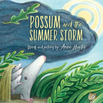 Possum And The Summer Storm Ebook By Anne Hunter 9781328549396