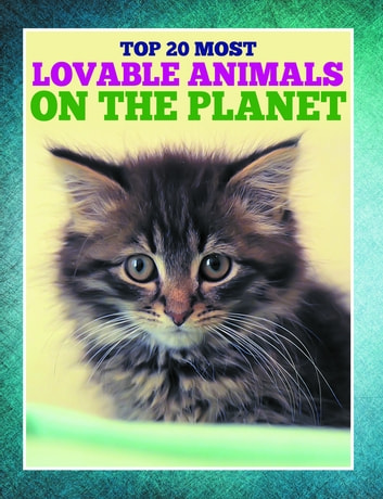 Top 20 Most Lovable Animals On The Planet - Children's Books and Bedtime Stories For Kids Ages 3-8 for Early Reading ebook by Speedy Publishing
