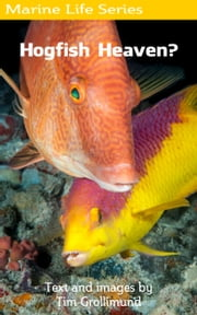 Hogfish Heaven? ebook by Tim Grollimund