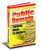 Public Domain: Turning Ideas to Dollars ebook by Thrivelearning Institute Library