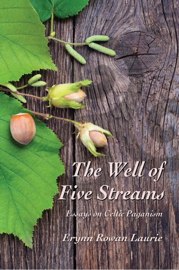 The Well of Five Streams Essays on Celtic Paganism ebook by Erynn Rowan Laurie