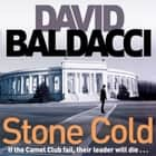 Stone Cold audiobook by David Baldacci