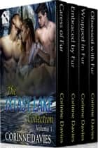 The 3xtasy Lake Collection, Volume 1 ebook by