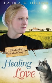 Healing Love ebook by Laura Hilton