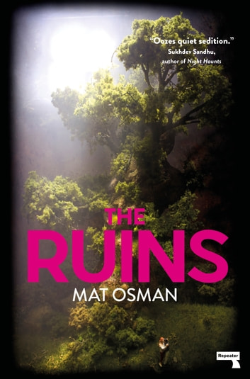 The Ruins ebook by Mat Osman