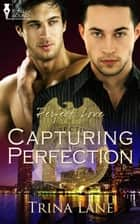 Capturing Perfection ebook by Trina Lane
