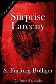 Surprise Larceny ebook by S. Furlong-Bolliger