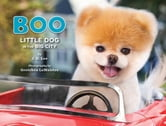 Boo: Little Dog in the Big City ebook by J.H. Lee