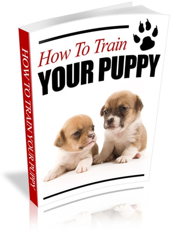 How to train your puppy ebook by jUSTIN LOWKE