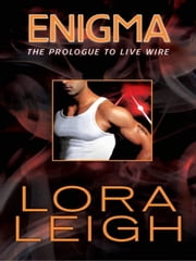 Enigma ebook by Lora Leigh