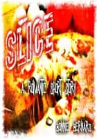 Slice ebook by Bonnie Bernard