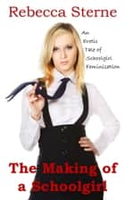 The Making of a Schoolgirl ebook by Rebecca Sterne