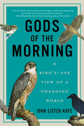 Gods of the Morning: A Bird's-Eye View of a Changing World ebook by John Lister-Kaye
