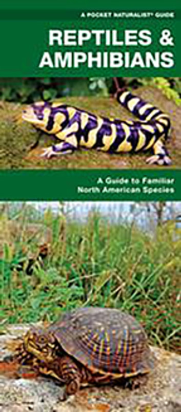 Reptiles & Amphibians - A Folding Pocket Guide to Familiar North American Species ebook by James Kavanagh,Waterford Press