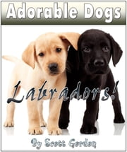 Adorable Dogs: Labradors! ebook by Scott Gordon