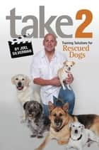 Take 2 ebook by Joel Silverman