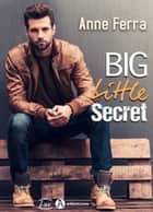 Big Little Secret eBook by Anne Ferra