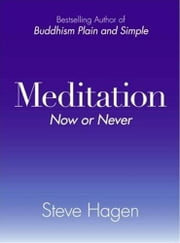 Meditation Now or Never ebook by Steve Hagen