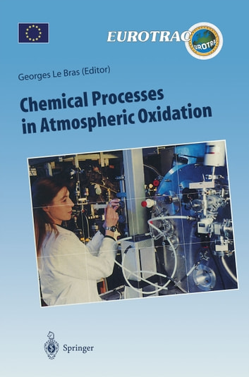 Chemical Processes in Atmospheric Oxidation - Laboratory Studies of Chemistry Related to Tropospheric Ozone ebook by