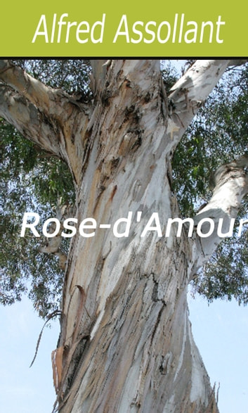 Rose-d'Amour ebook by Alfred Assollant