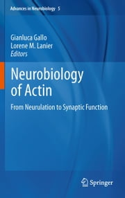 Neurobiology of Actin - From Neurulation to Synaptic Function ebook by