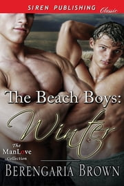 The Beach Boys: Winter ebook by Berengaria Brown