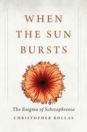 When the Sun Bursts - The Enigma of Schizophrenia ebook by Christopher Bollas