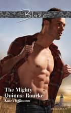 The Mighty Quinns - Rourke ebook by KATE HOFFMANN