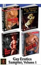 Gay Erotica Volume 1: Black Fire, In Plain View, The Company He Keeps, Rough Trade ebook by Shane Allison, Dale Chase, Todd Gregory